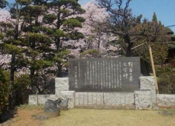 野菊の墓文学碑(松戸駅/観光)