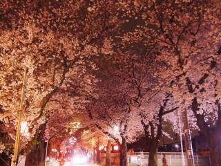 松戸レンタカー夜のドライブにおすすめ
