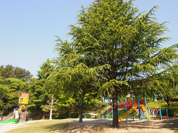 大池公園(東海市)