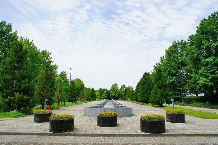 千葉県/柏の葉公園