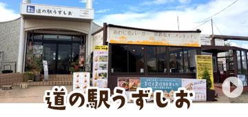 淡路島(道の駅うずしお)