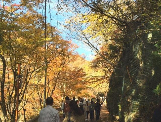 花貫渓谷(茨城県高萩市/紅葉)