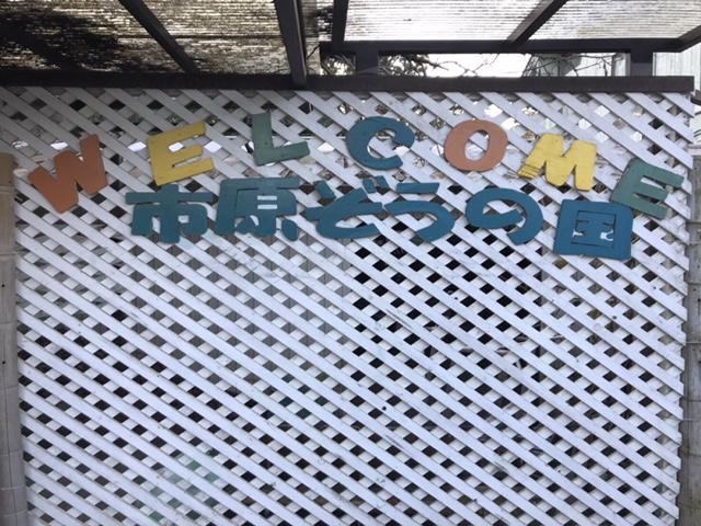 市原ぞうの国 (千葉県市原市/動物園)