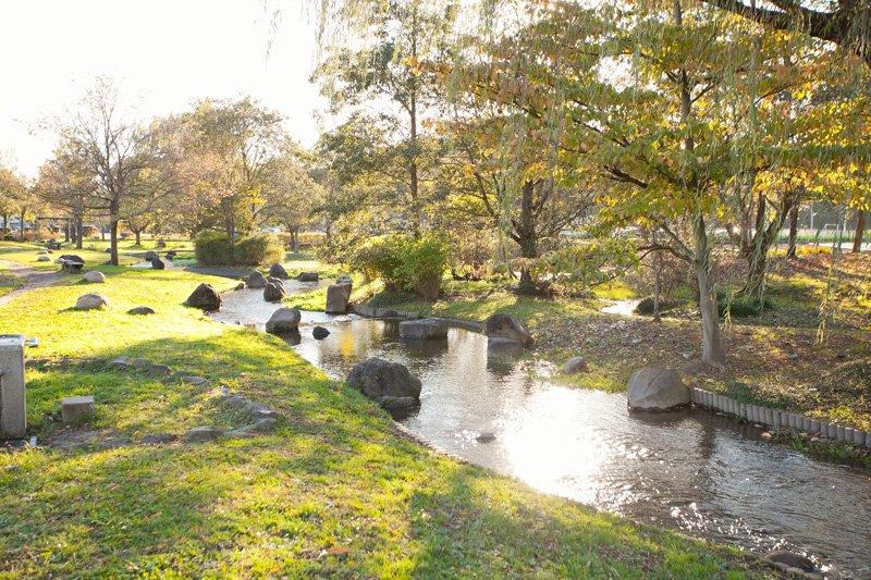 野々下水辺公園(千葉県流山市/公園)