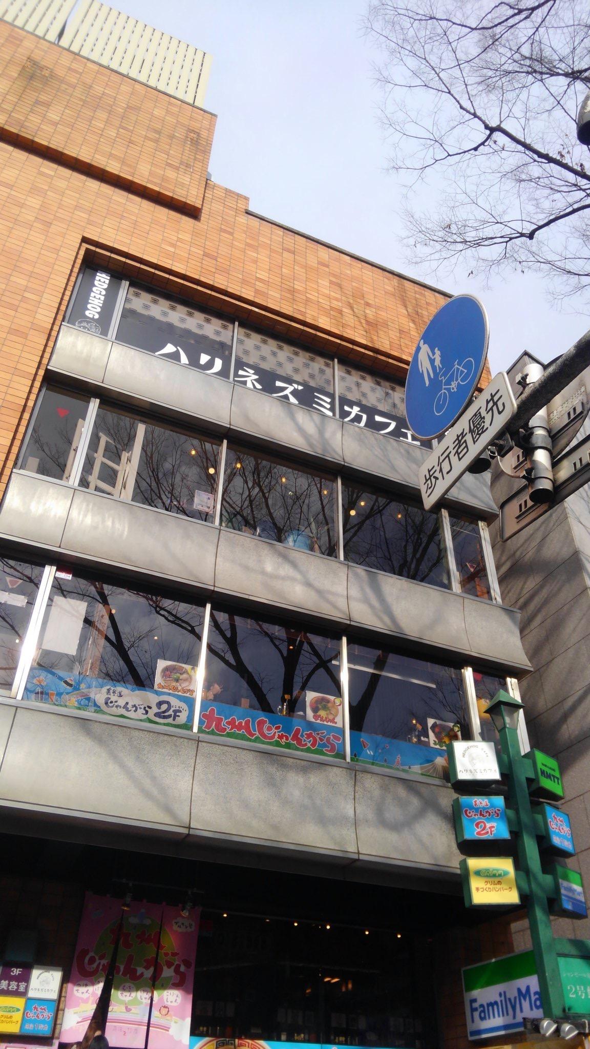 ハリネズミカフェHARRY(東京都渋谷区)