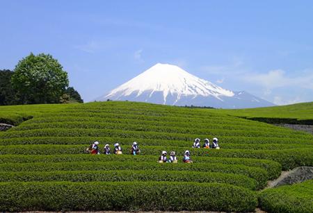 静岡県の古き良き風景をパシャリ♪(静岡県/富士市)
