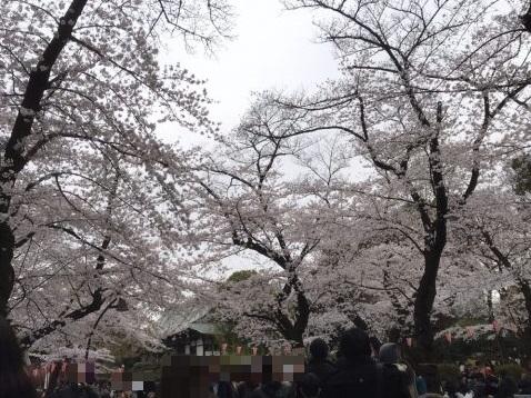上野恩賜公園(東京都台東区)