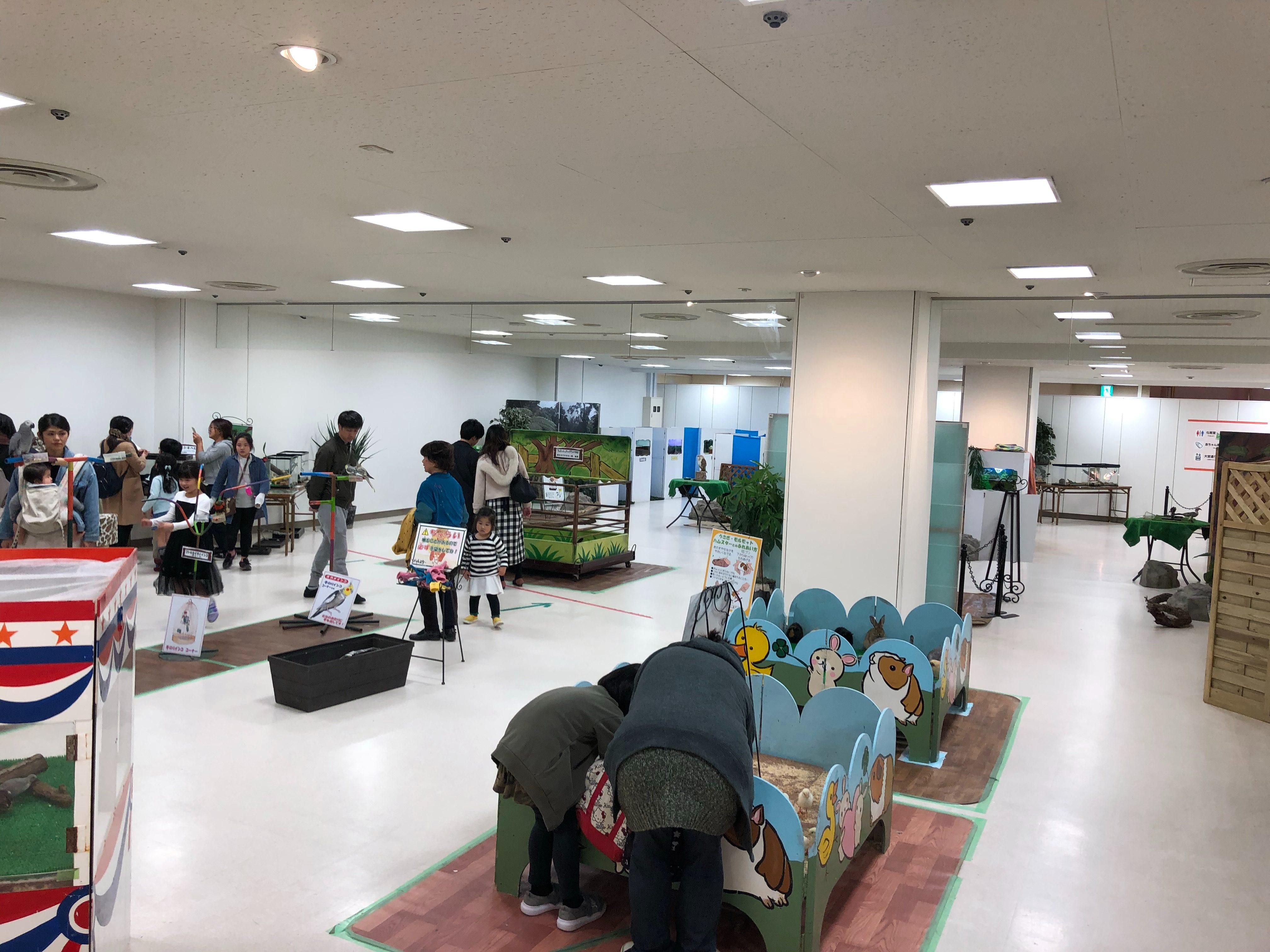 動物ふれあい広場(奈良市/ミ・ナーラ3F)