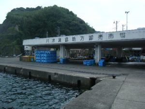 勝浦漁協地方卸売市場 釣りの旅!!(勝浦市)