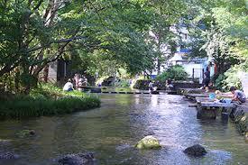 静岡が誇る水の都(静岡県/三島市)