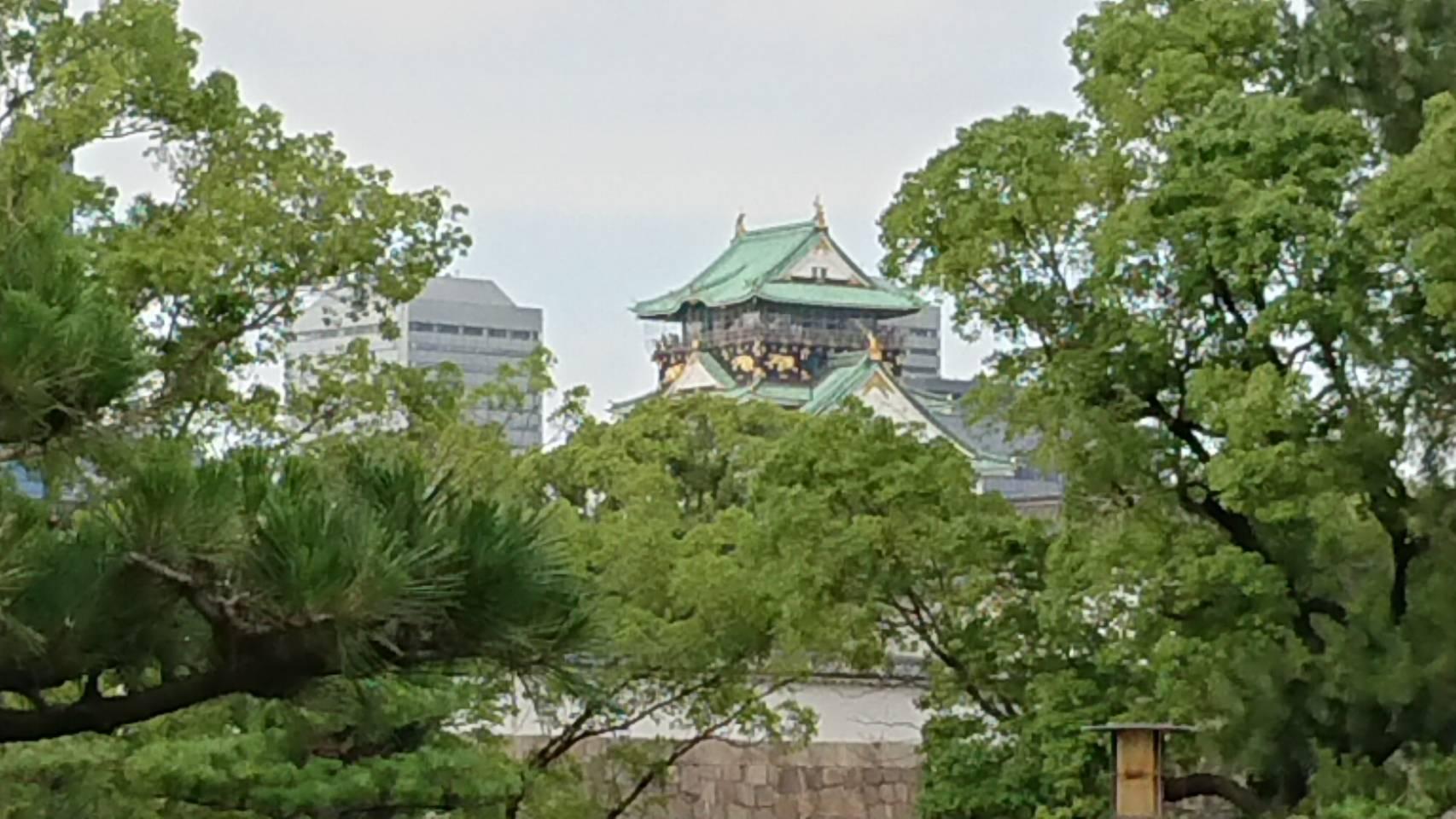 大阪城公園(大阪市)