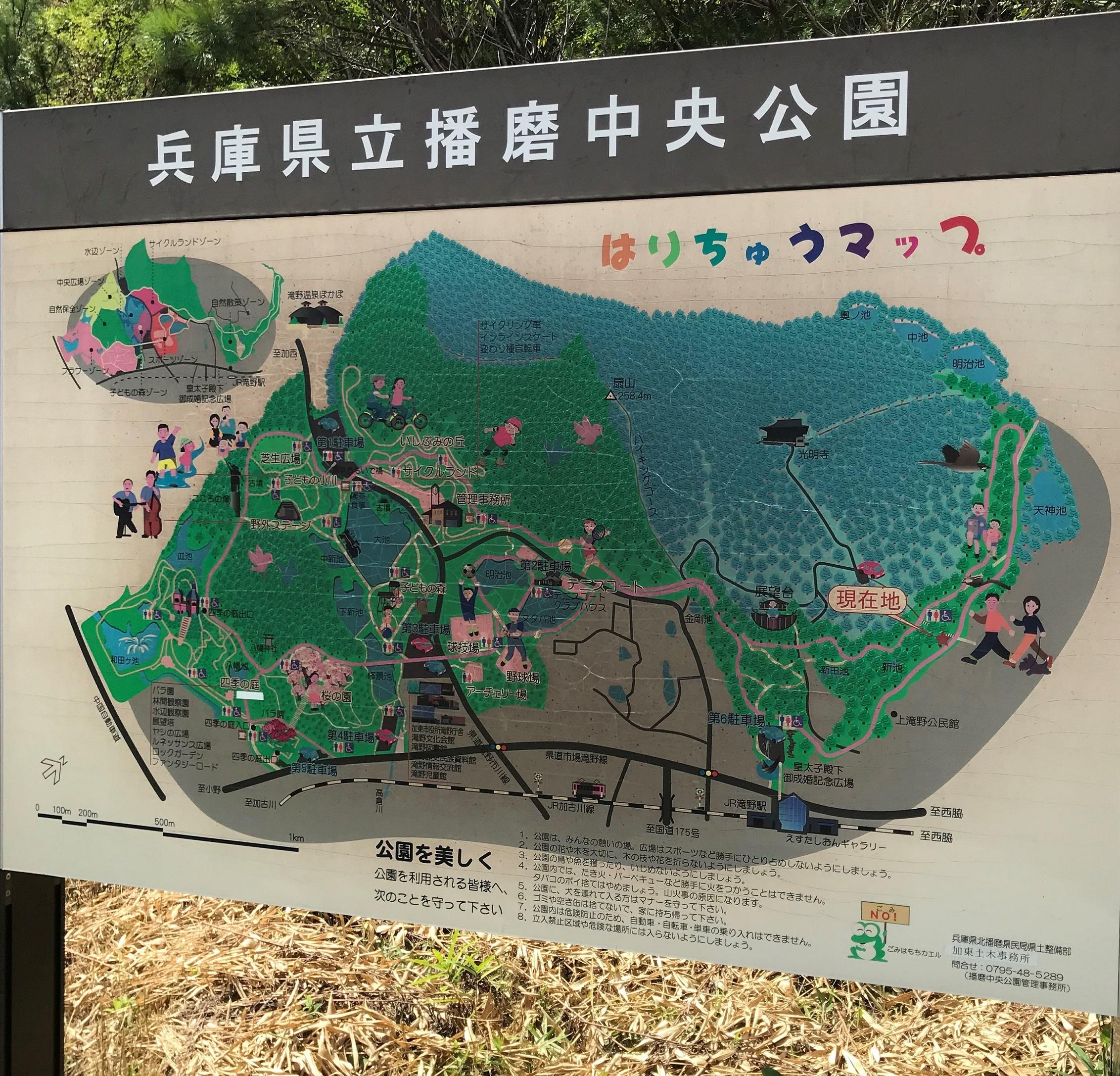 播磨中央公園(兵庫県)