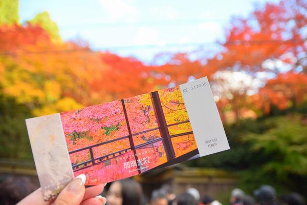 瑠璃光院(京都市 左京区)