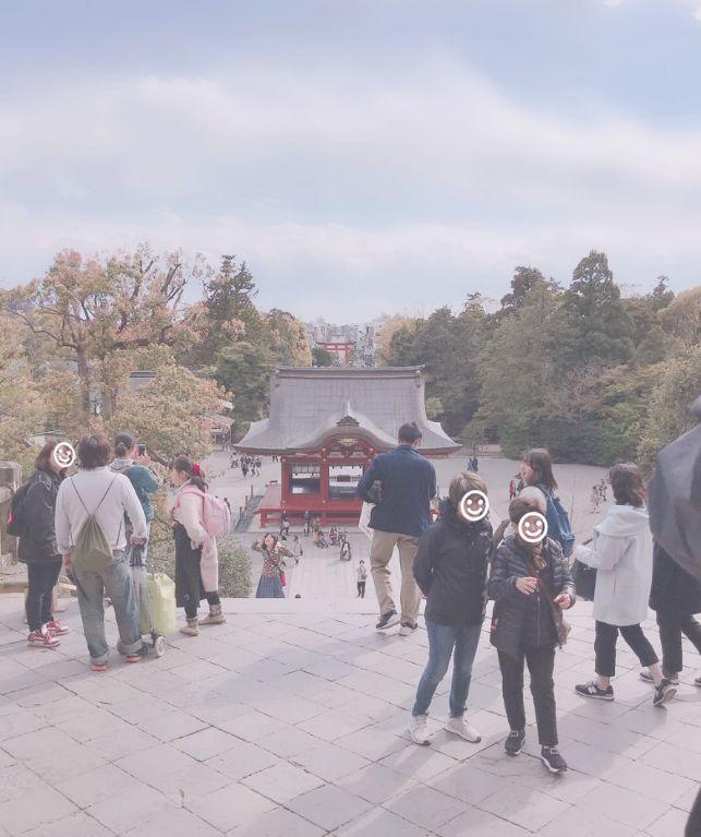 【小田原店】鶴岡八幡宮(神奈川県鎌倉市)