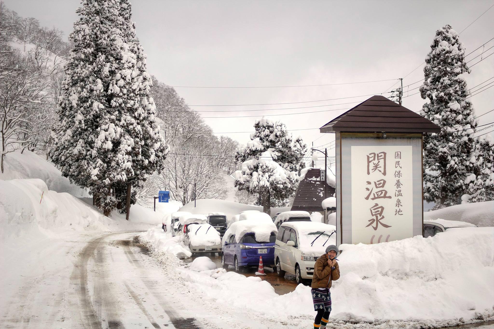 関温泉スキー場 (新潟県妙高市/スキー場)