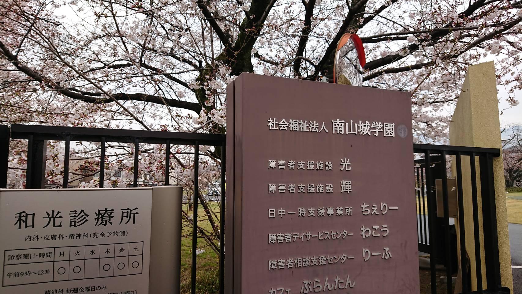 【枚方店】南山城学園付近まで散歩してきました。