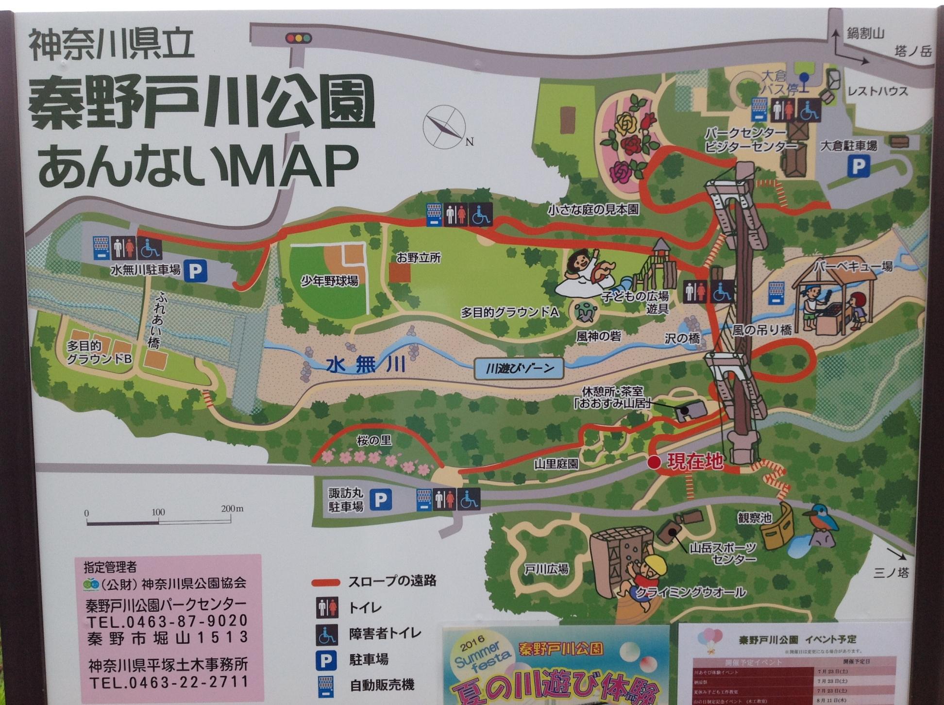 【小田原店】ガッツレンタカーで秦野戸川公園へ快適ドライブ♪