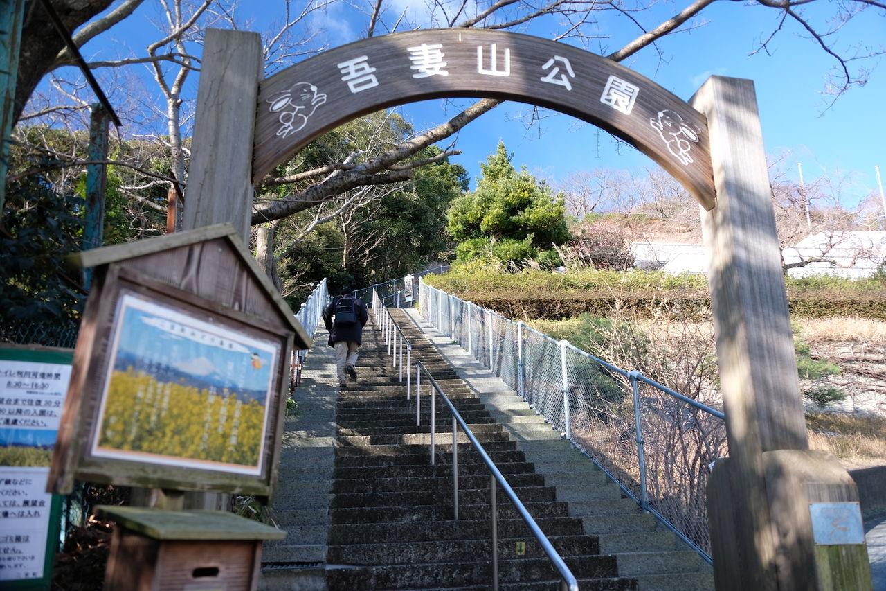 二宮の吾妻山公園にガッツレンタカーで行ってきました