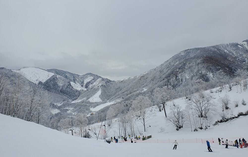 【本店】ほおの木平スキー場(岐阜県高山市)