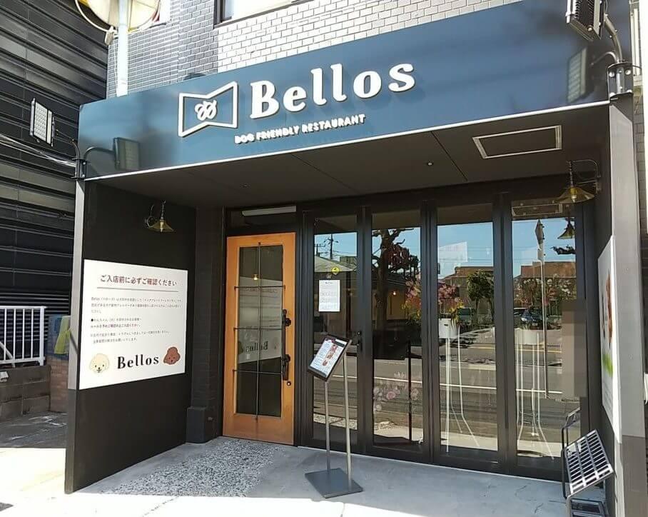 【松戸店】Bellos (ベローズ)