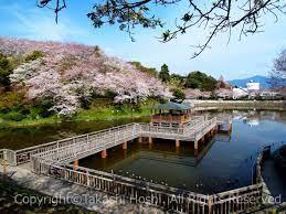 【富士店】清水船越堤公園でなまった身体を動かそう