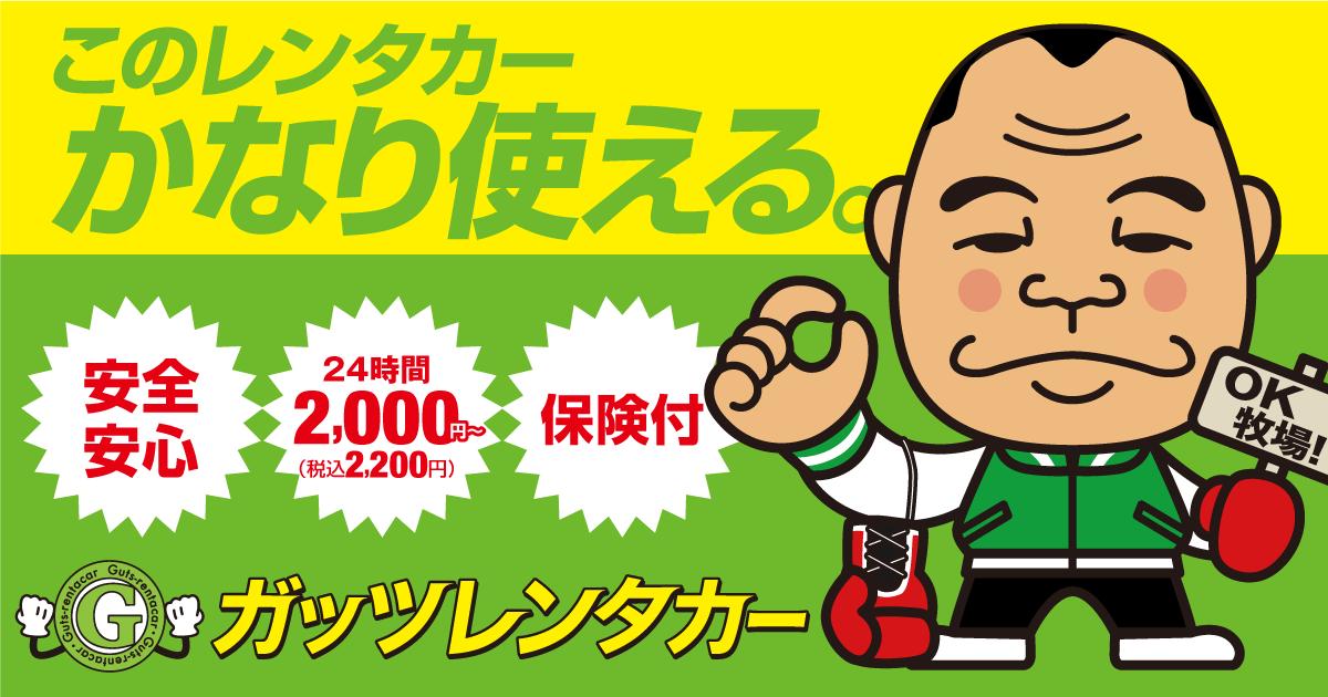 格安レンタカーのガッツレンタカー|24時間 2,000円~